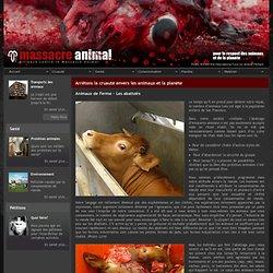 AMA - Massacre Animal - Dénoncer la cruauté envers les animaux - Les abattoirs
