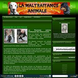 MASSACRE EN ROUMANIE - Maltraitance animale