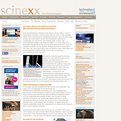 Wie marktreif sind die Brennstoffzellen? - Energie erneuerbare Energien Brennstoffzellen