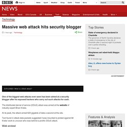 Massive web attack hits security blogger