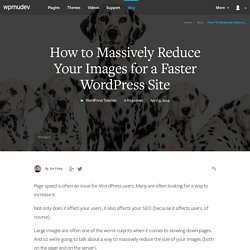 How to Massively Reduce Your Images for a Faster WordPress Site