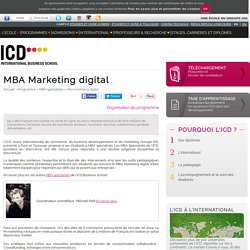 Master Marketing digital - ICD