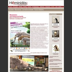 Mastodonte : une histoire de famille - Exposition - Tautavel