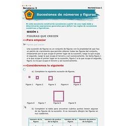 Libros de Matemáticas I. Telesecundaria primer grado, volumen I.