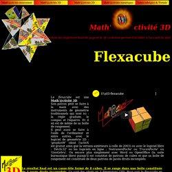 ctivité 3D : flexacube