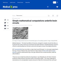 Simple mathematical computations underlie brain circuits