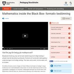Mathematics inside the Black Box- formativ bedömning