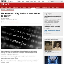 Mathematics: Why the brain sees maths as beauty