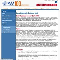 Dolciani Mathematics Enrichment Grants