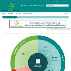 Elementary Mathematics Professional Development