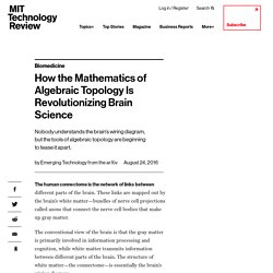 How the Mathematics of Algebraic Topology Is Revolutionizing Brain Science