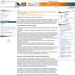 Plan d'aide pour l'acquisition progressive de compétences en mathématiques- Pédagogie - Direction des services départementaux de l'éducation nationale du 86