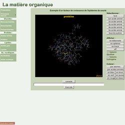 Matière organique