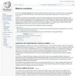 Matrice nucléaire
