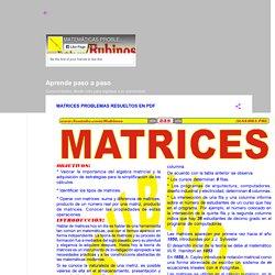 MATRICES PROBLEMAS RESUELTOS EN PDF