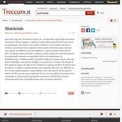 """Matriciale in """"Dizionario delle Scienze Fisiche"""