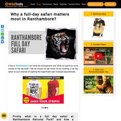 Why a full-day safari matters most in Ranthambore National Park ?
