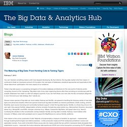 The Maturing of Big Data: From Herding Cats to Taming Tigers