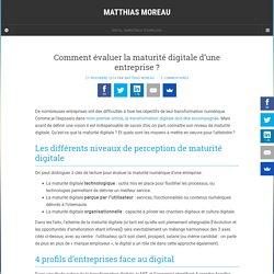 Comment évaluer la maturité digitale d'une entreprise ? - Matthias Moreau