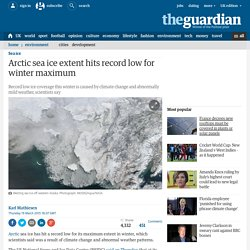 Arctic sea ice extent hits record low for winter maximum