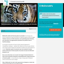 McDonald's : achetez de l'huile de palme durable!