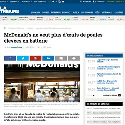 McDonald's ne veut plus d'œufs de poules élevées en batterie