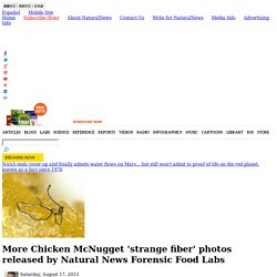 More Chicken McNugget 'strange fiber' photos released by Natural News Forensic Food Labs