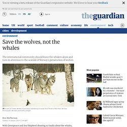 Save the wolves, not the whales