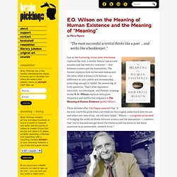 "E.O. Wilson on the Meaning of Human Existence and the Meaning of ""Meaning"""