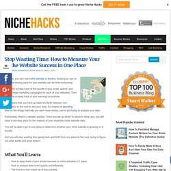 How to Measure the Success of Your Niche Websites