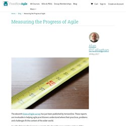Measuring the Progress of Agile