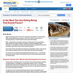 Is the Meat You Are Eating Being Fed Animal Feces?