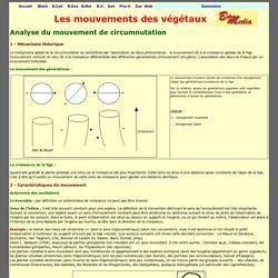 Mécanisme de la circumnutation