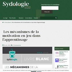 Les mécanismes de la motivation en jeu dans l'apprentissage - Sydologie