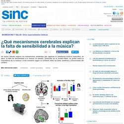 ¿Qué mecanismos cerebrales explican la falta de sensibilidad a la música?
