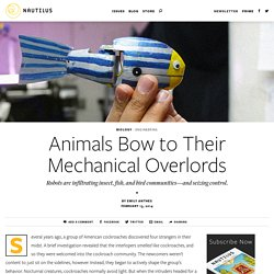 Animals Bow to Their Mechanical Overlords - Issue 10: Mergers & Acquisitions