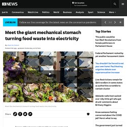Meet the giant mechanical stomach turning food waste into electricity