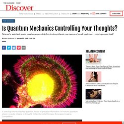 Is Quantum Mechanics Controlling Your Thoughts?