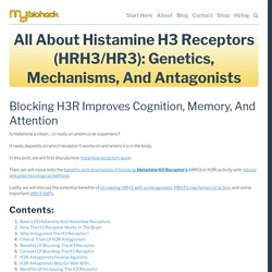 All About Histamine H3 Receptors (HRH3/HR3): Genetics, Mechanisms, And Antagonists
