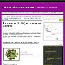 La menthe (Bo He) en médecine chinoise » Tuina et Diététique Chinoise
