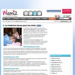 La médecine douce pour les chats - Soins du chat