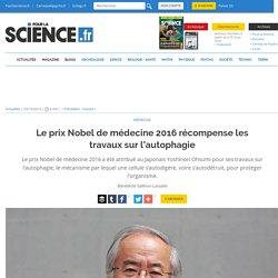 Le prix Nobel de médecine 2016 récompense les travaux sur l'autophagie