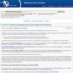 Évolution de l'épidémie de fièvre jaune au Brésil
