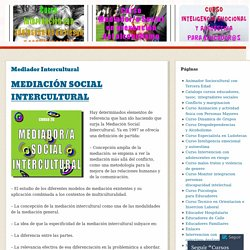 Mediador Intercultural