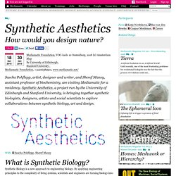 Synthetic Aesthetics