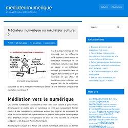 Médiateur numérique ou médiateur culturel ?
