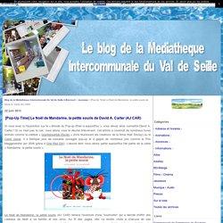 [Pop-Up Time] Le Noël de Mandarine, la petite souris de David A. Carter (AJ CAR) - Blog de la Médiathèque Intercommunale Du Val de Seille à Bioncourt