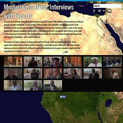 Mediating in Africa: Interviews with Experts