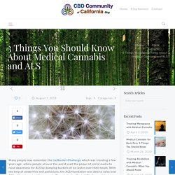 3 Things You Should Know About Medical Cannabis and ALS Treatment