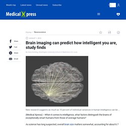 Brain imaging can predict how intelligent you are, study finds